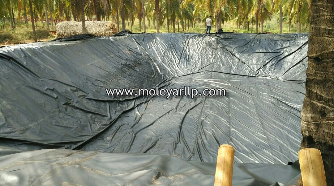 Cocunut farm pond with liner